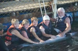 dolphin lodge serangan 12