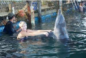 dolphin lodge serangan 3